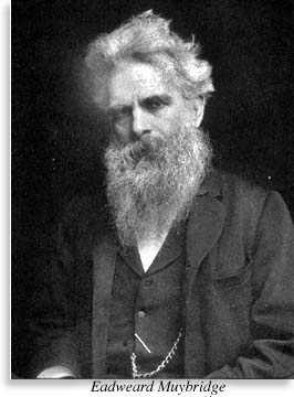 portrait of Eadweard Muybridge